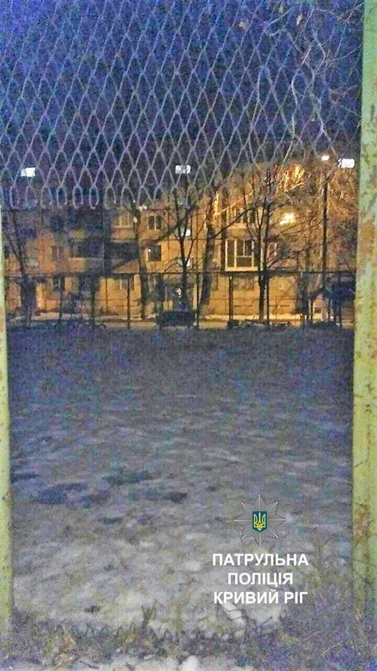 """Полиция задержала на спорт-площадке двоих криворожских """"спортсменов"""", таскавших железо (ФОТО), фото-2"""