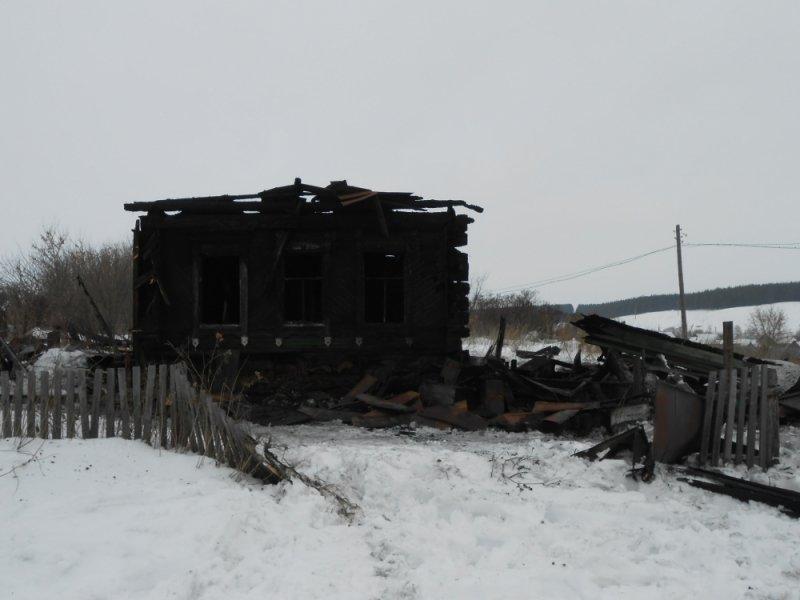 Ночью под Ульяновском полностью сгорел дом. ФОТО, фото-1
