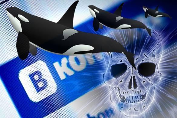 группа смерти киты