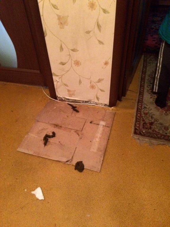 В Киеве мальчика-сироту держали в комнате-свалке (ФОТО), фото-3