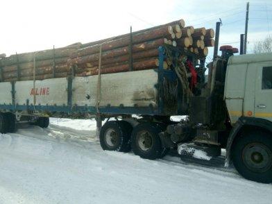 На Камчатке пассажирский автобус влетел в лесовоз – пострадали 22 человека, фото-1