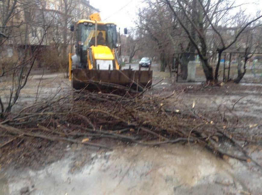 В Мариуполе ОСМД заказало вырубку своих деревьев депутату (ФОТО), фото-4