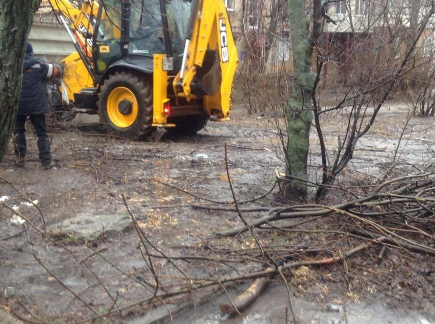 В Мариуполе ОСМД заказало вырубку своих деревьев депутату (ФОТО), фото-3
