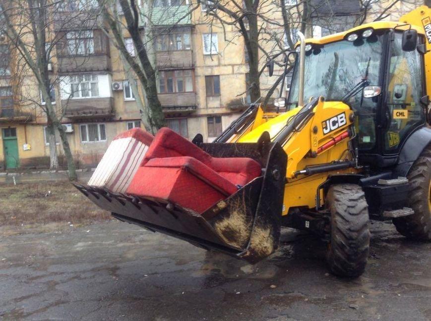 В Мариуполе ОСМД заказало вырубку своих деревьев депутату (ФОТО), фото-1