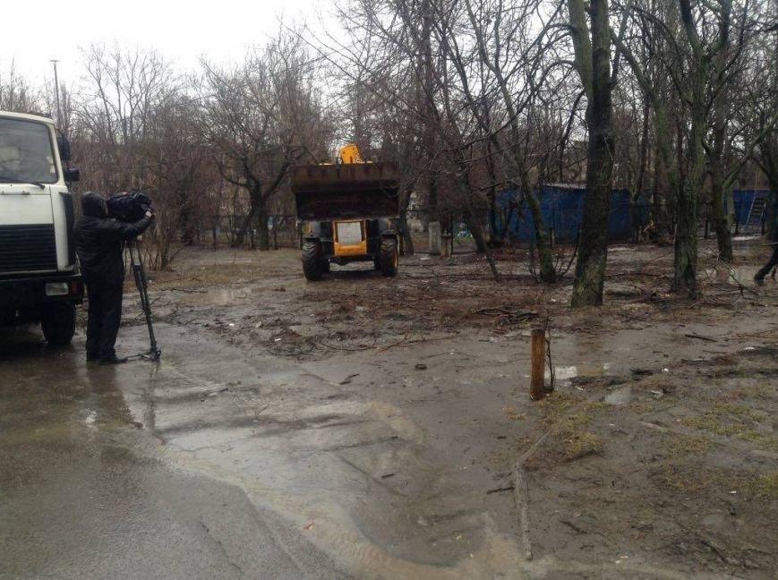 В Мариуполе ОСМД заказало вырубку своих деревьев депутату (ФОТО), фото-5
