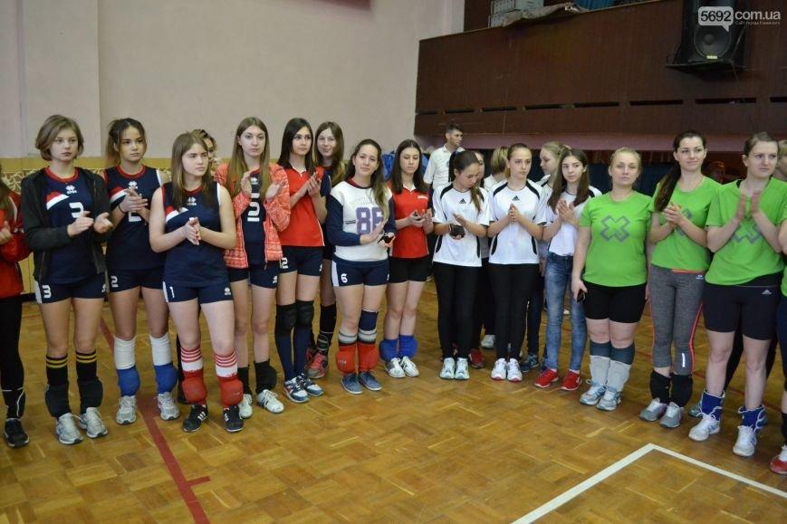 В Каменском открылся турнир по волейболу, фото-2