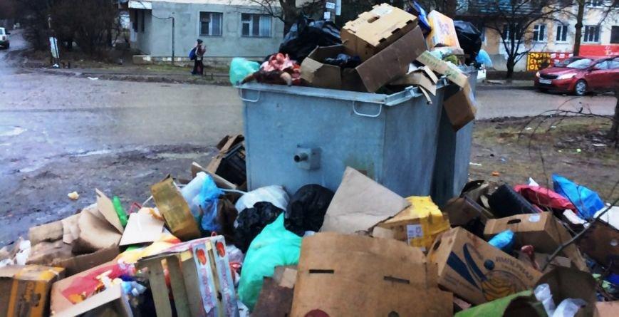 """Горы мусора, окровавленные кости и собачьи бои: люди в ужасе от """"прелестей"""" первого муниципального рынка Симферополя (ФОТО), фото-2"""