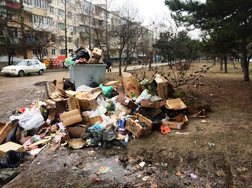 """Горы мусора, окровавленные кости и собачьи бои: люди в ужасе от """"прелестей"""" первого муниципального рынка Симферополя (ФОТО), фото-4"""