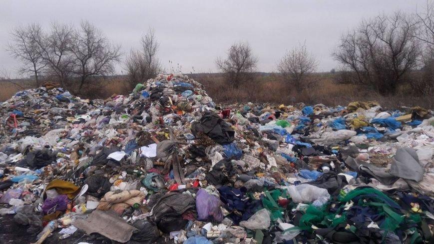 Під Кременчуком у Піщаному виявлено ще 5 куп львівського сміття: Львів знову експортує на Полтавщину свою «екологічну катастрофу» (ФОТО), фото-3