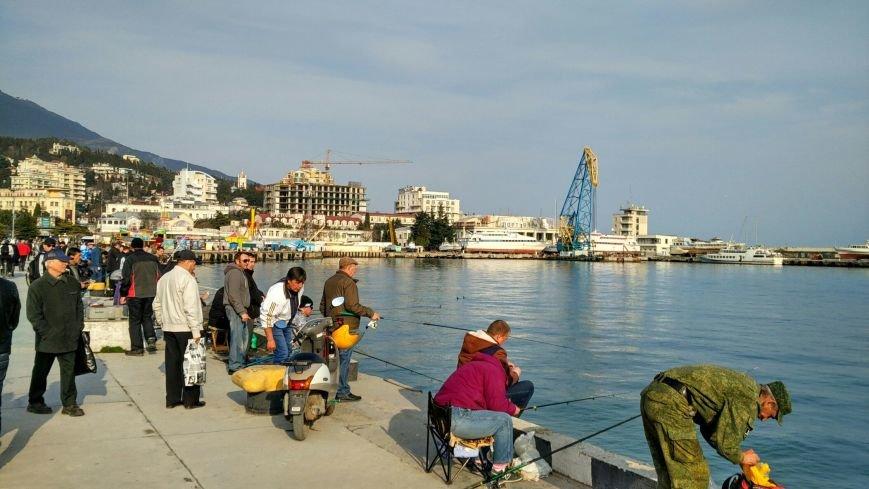 ФОТО: на набережной в Ялте отменен запрет на рыбалку, фото-3