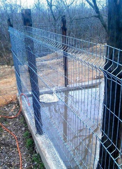 Спасённый черноморцами лебедь переехал в «Нью-Васюки» (фото), фото-2
