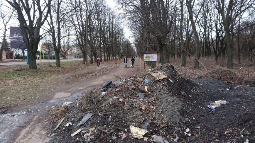 В Ужгороді вхід до Боздоського парку перетворили на сміттєзвалище: фото, фото-1