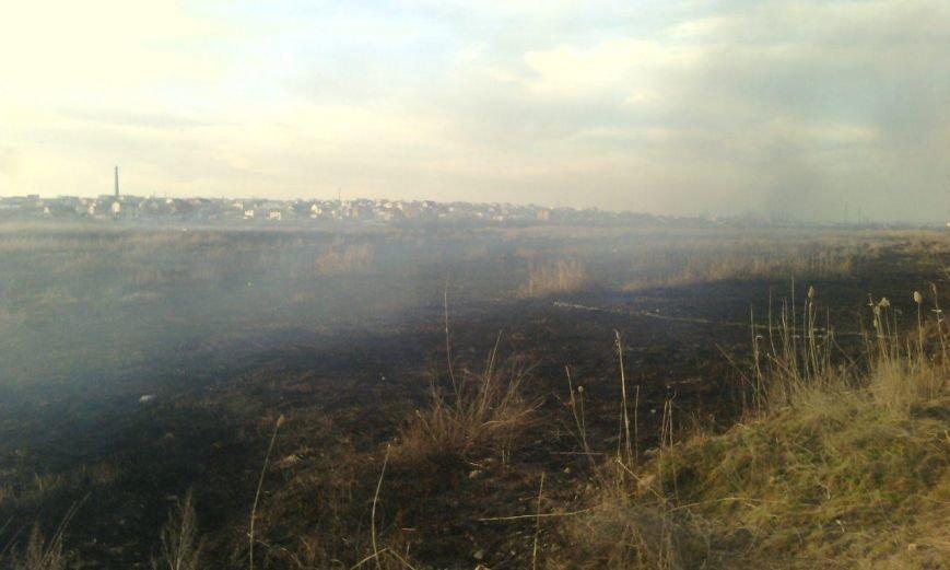 Херсонщина потерпає від пожеж в екосистемах (фото), фото-3