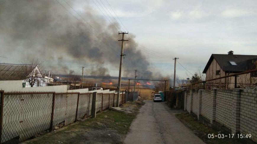 Херсонщина потерпає від пожеж в екосистемах (фото), фото-1