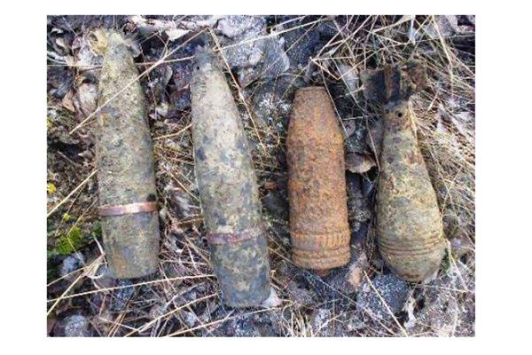 Белгородец нашёл в лесу снаряды времён войны, фото-1