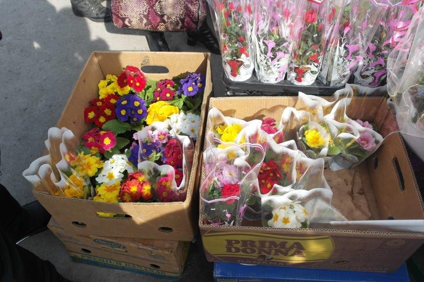 Розы, тюльпаны, орхидеи и мимоза: во сколько мужчинам Покровска обойдется букет на 8 марта?, фото-23
