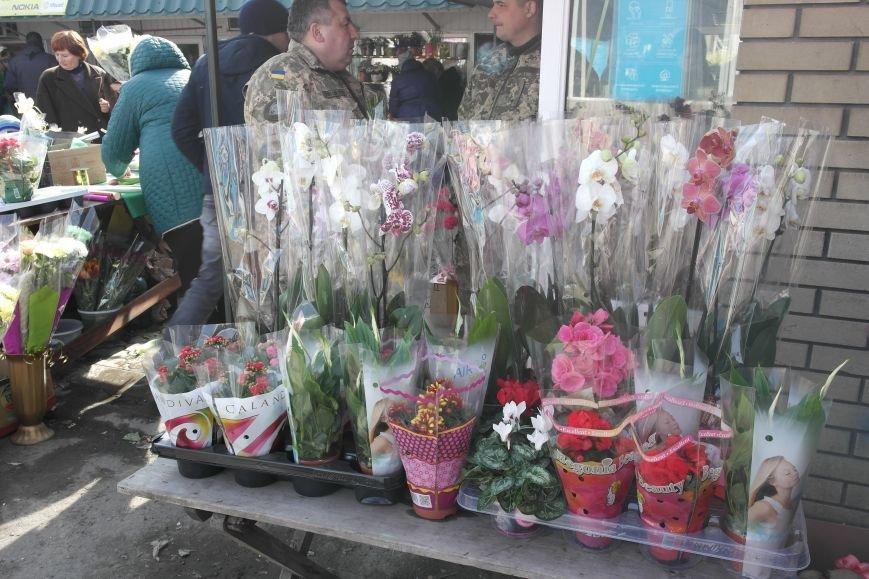 Розы, тюльпаны, орхидеи и мимоза: во сколько мужчинам Покровска обойдется букет на 8 марта?, фото-16