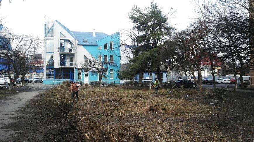 В Ужгороді вперше за декілька років прибирають прибудинкову територію біля ЗОШ №6: фото, фото-1