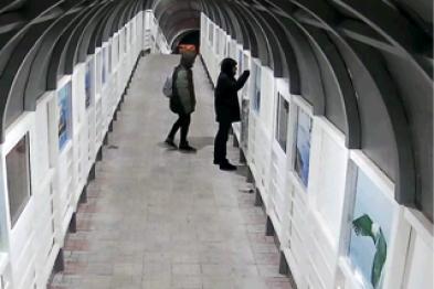 В Петропавловске в виадуке на КП появились новые «автографы» вандалов, фото-1