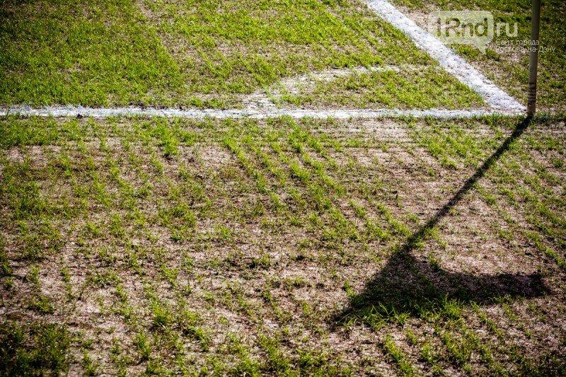 УЕФА: Поле на стадионе в Ростове пригодно для проведения матча, фото-1