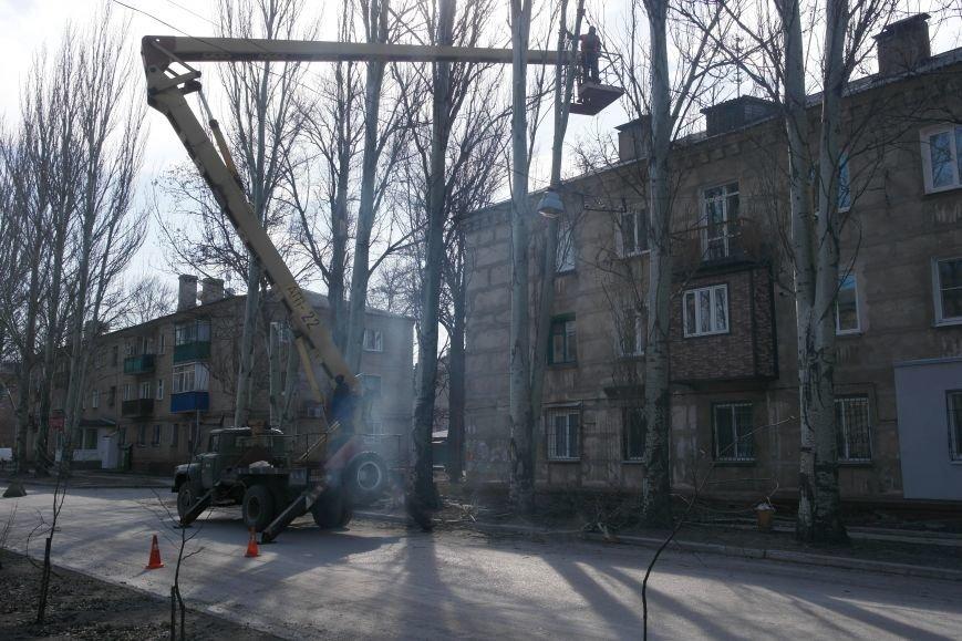 Обрезка по-покровски: Если бы деревья умели говорить, они взмолились бы о пощаде, фото-4