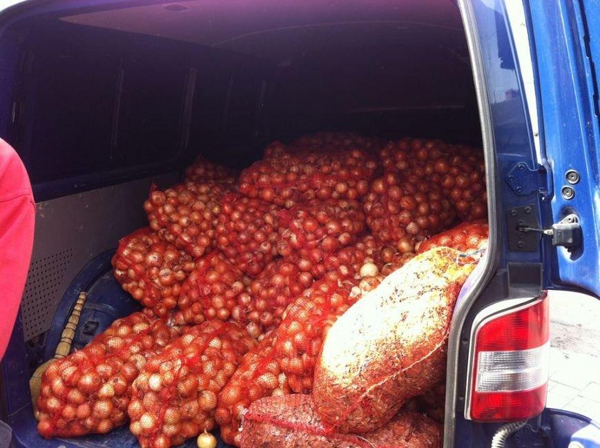 Фермер из Херсонской области передал для ВСУ и волонтеров более 4 тонн лука, фото-1