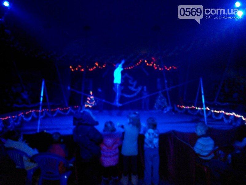 Новомосковск: все в цирк!, фото-11