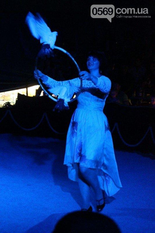 Новомосковск: все в цирк!, фото-3