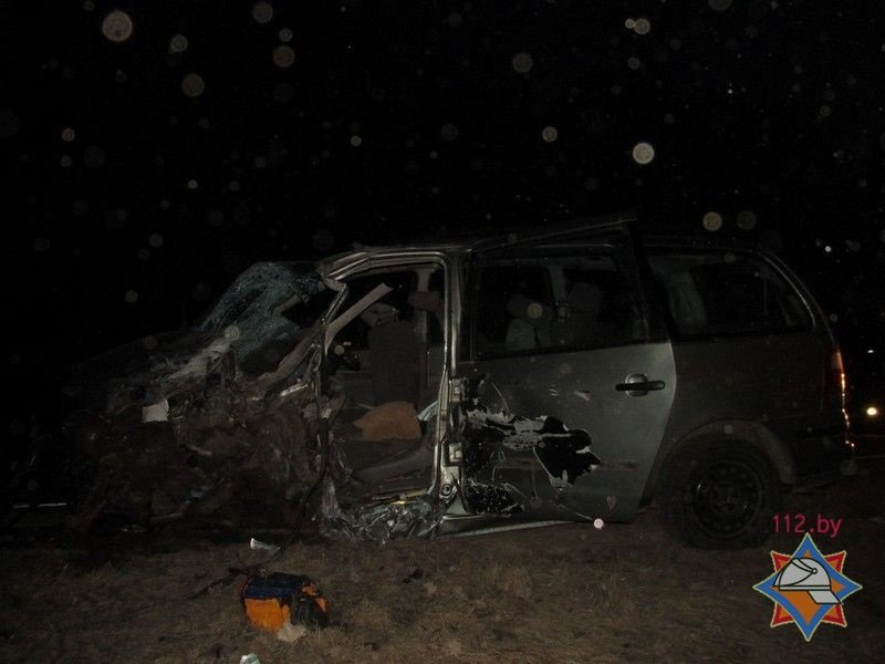 Под Лепелем Ford Galaxy протаранил грузовик Renault: водителя легковушки из авто доставали спасатели. ФОТО, фото-1
