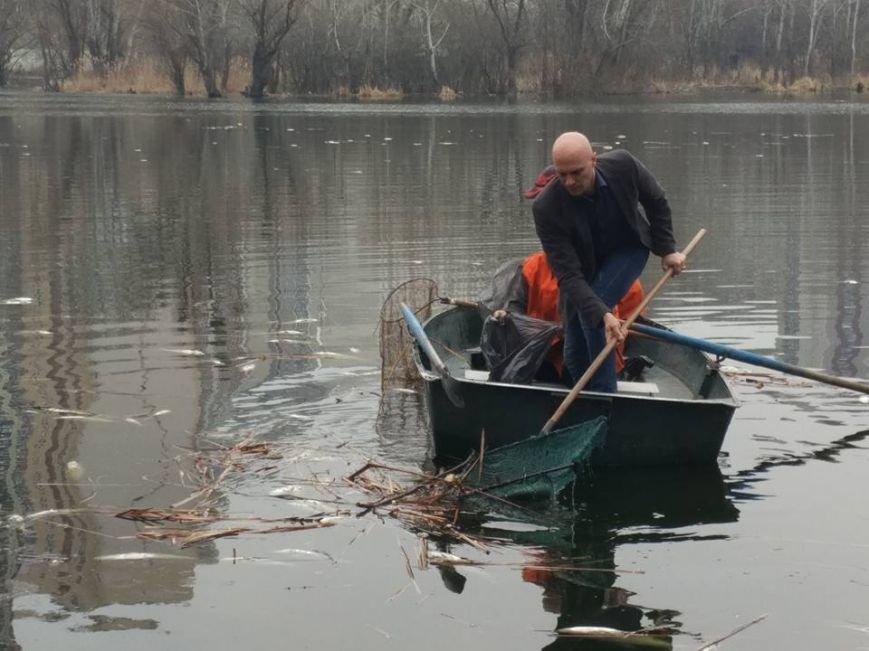 В озере на Позняках произошел массовый мор рыбы (ФОТО), фото-1