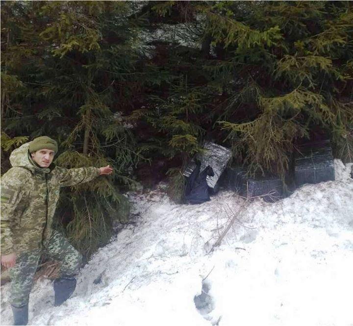Закарпатські прикордонники знайшли партію контрабандних цигарок під ялинкою: фото, фото-1