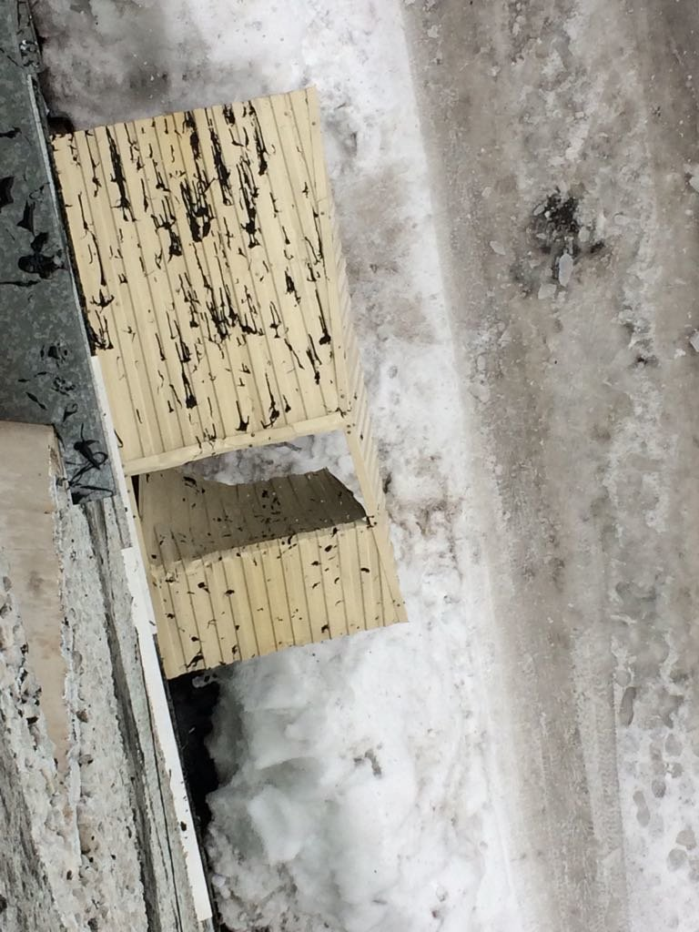 В Петропавловске ледяная глыба насквозь пробила козырек подъезда, фото-4