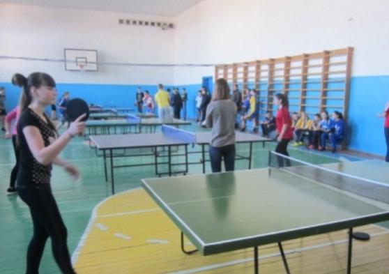 У Новоград-Волинському районі пройшли змагання з настільного тенісу серед школярів ЗОШ І-ІІ ступенів, фото-1