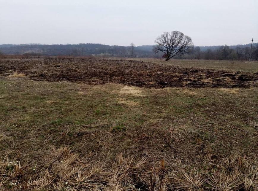 Долина нарцисів потерпає від пожеж: фото, фото-4