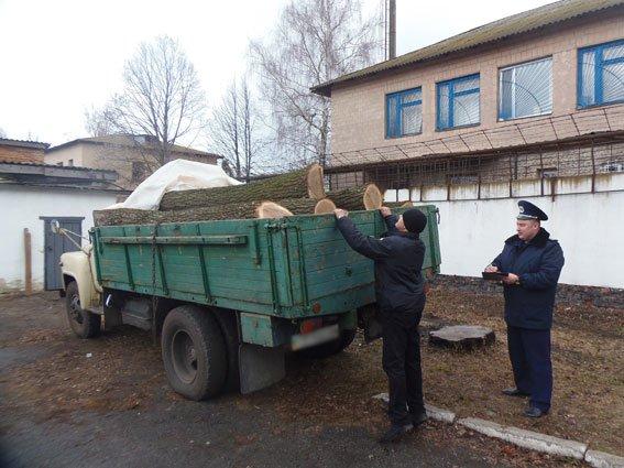На Черниговщине снова остановили автомобиль, груженый нелегальных лесом, фото-2