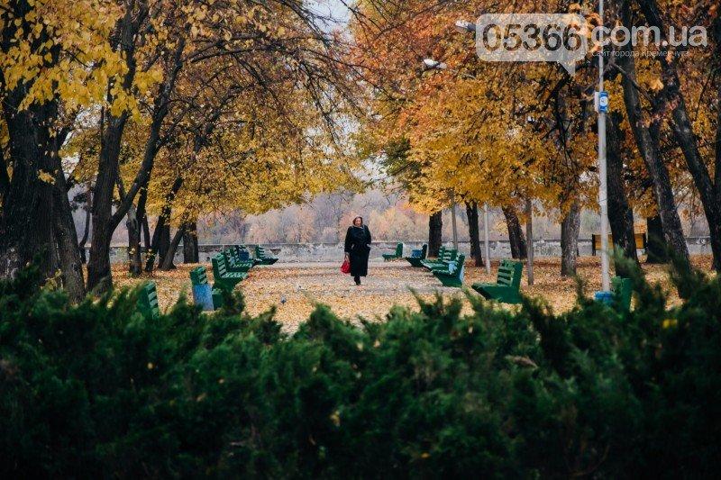 В Приднепровском парке должно быть больше деревьев, а кафе, аттракционов и асфальта - меньше, фото-1