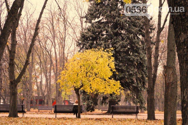 В Приднепровском парке должно быть больше деревьев, а кафе, аттракционов и асфальта - меньше, фото-4