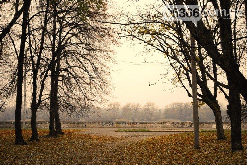 В Приднепровском парке должно быть больше деревьев, а кафе, аттракционов и асфальта - меньше, фото-6