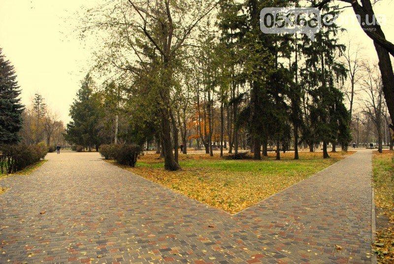 В Приднепровском парке должно быть больше деревьев, а кафе, аттракционов и асфальта - меньше, фото-7