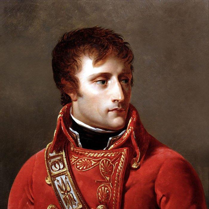 Napoleon_Bonaparte_Consul