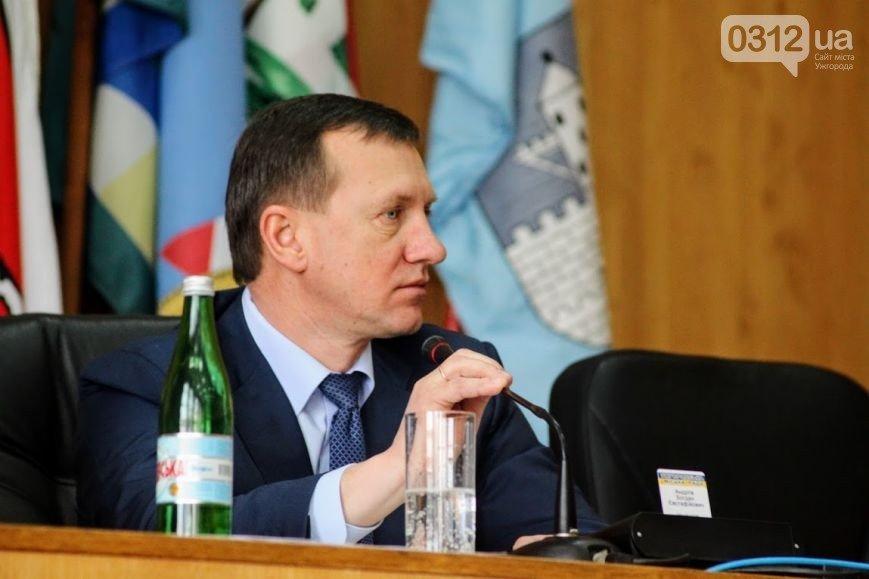 Наступна сесія в Ужгороді: новий заступник для Андріїва, гроші та земельні питання, фото-1