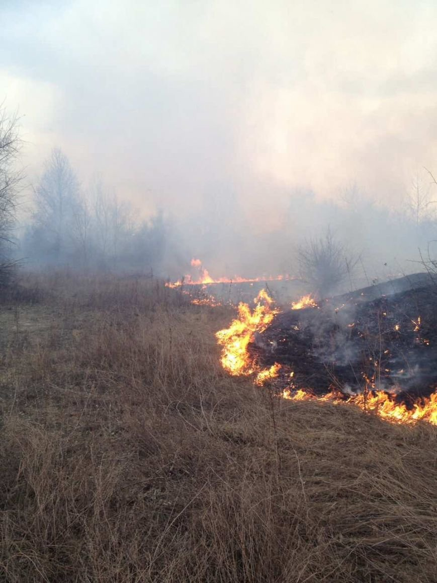 Как кременчугские пожарные в Крюкове сухую траву тушили (ФОТО), фото-2