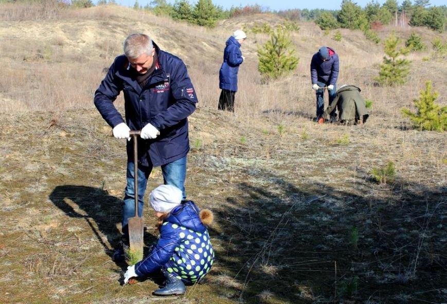 Кременчугские школьники посадили хвойный лес под Кременчугом (ФОТО), фото-3