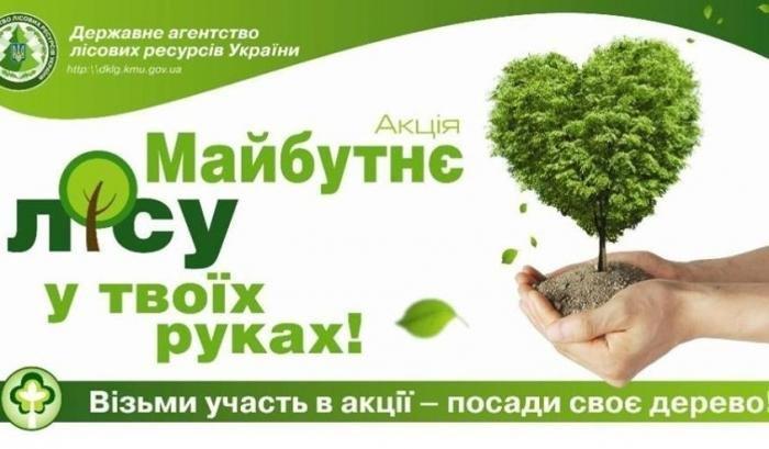 Кременчугские школьники посадили хвойный лес под Кременчугом (ФОТО), фото-6