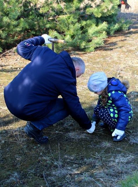 Кременчугские школьники посадили хвойный лес под Кременчугом (ФОТО), фото-1