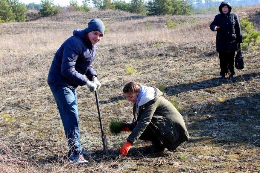 Кременчугские школьники посадили хвойный лес под Кременчугом (ФОТО), фото-4