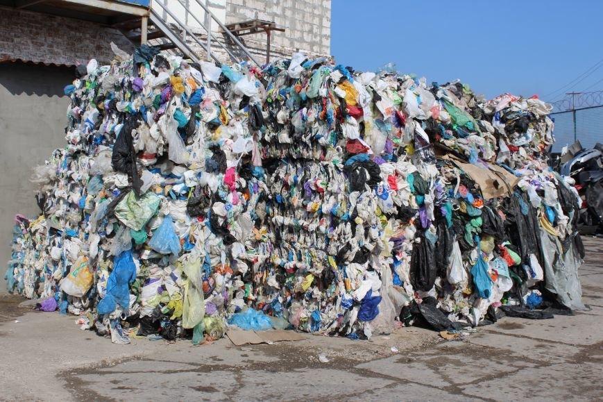 Выбрасывай правильно: куда и за сколько можно отдать отработанный пластик, фото-7