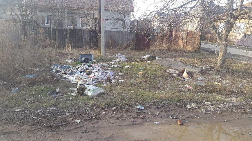 Як у Мукачеві городян штрафують за засмічення міста: фото, фото-2