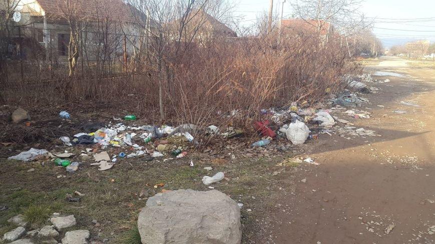 Як у Мукачеві городян штрафують за засмічення міста: фото, фото-1