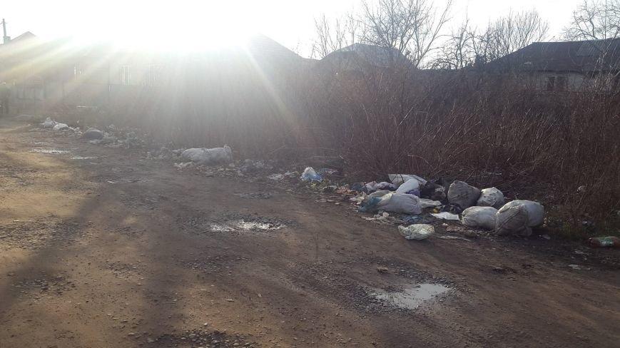 Як у Мукачеві городян штрафують за засмічення міста: фото, фото-3